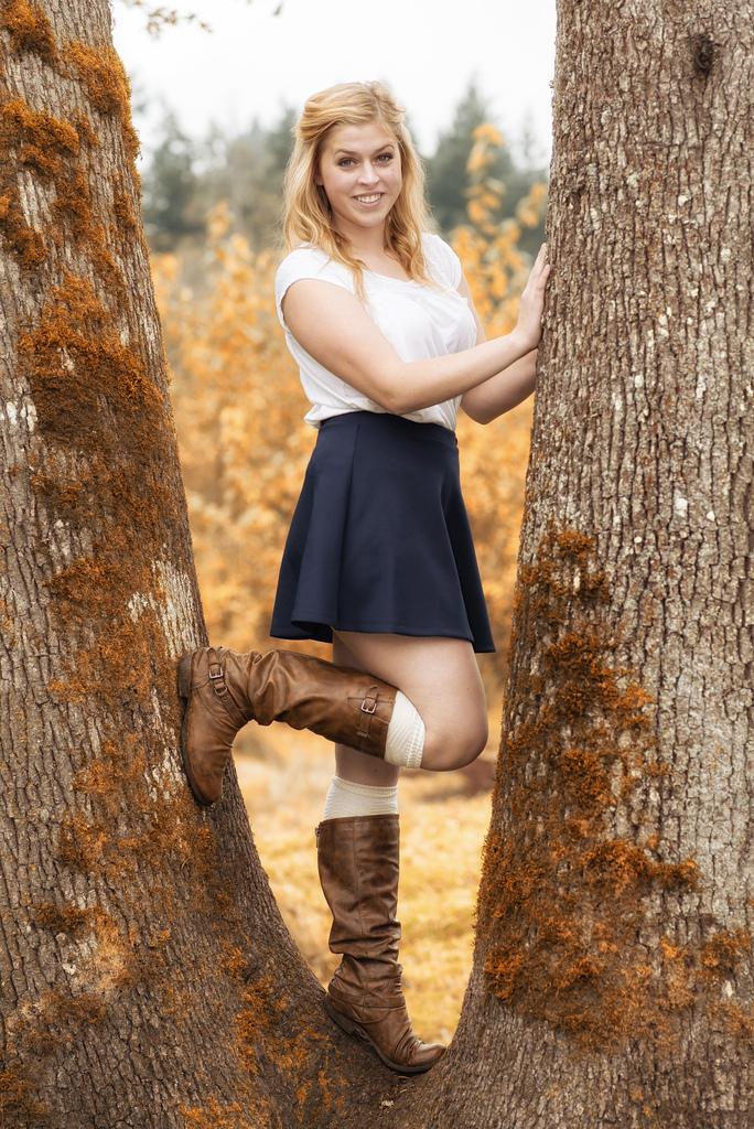 Katie tree